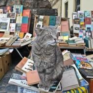 bookmarket3