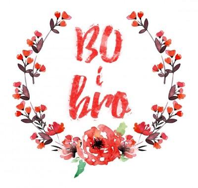 Bo-i-Bro