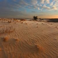 Kitsovskaya Desert