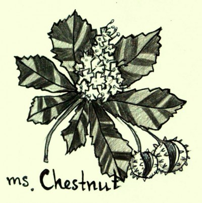 Ms. Chestnut Art